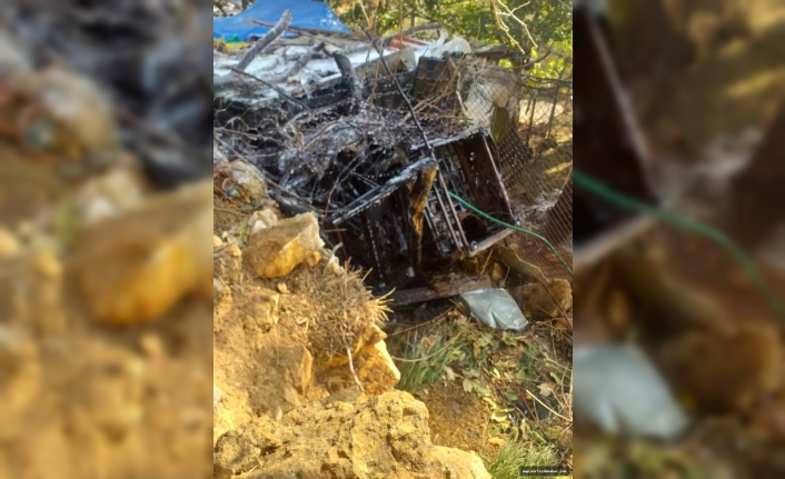 Beyoba'da dam yangınında 3 keçi kurtarıldı