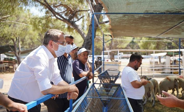 Başkan Ergin'den Kurban Satış Yerine Ziyaret