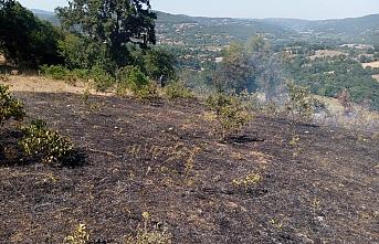 100 dönüm alan yandı