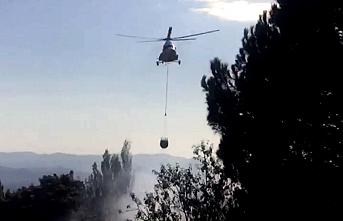 Edremit'te orman yangını. Kazdağları eteklerinde orman  yangını korkuttu