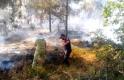 Balıkesir'in iki ilçesinde orman yangını çıktı