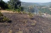 Balya'da ot yangını