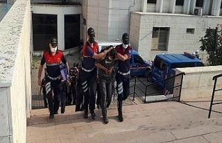Jandarma'dan 3 ilçede uyuşturucu operasyonu