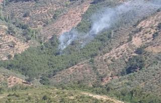 Edremit ilçesinde çıkan ve 2 hektarlık ormanlık...
