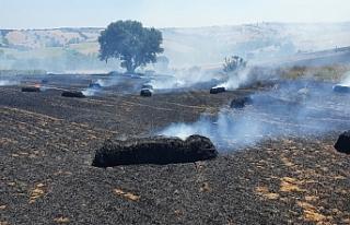 100 dönüm arazi cayır cayır yandı