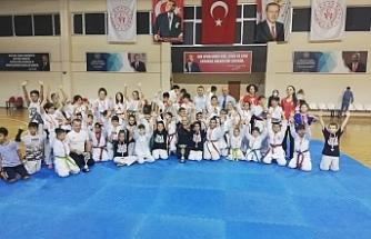 Ayvalık'ta Kurtuluş Günü Taekwondo şampiyonası heyecanı
